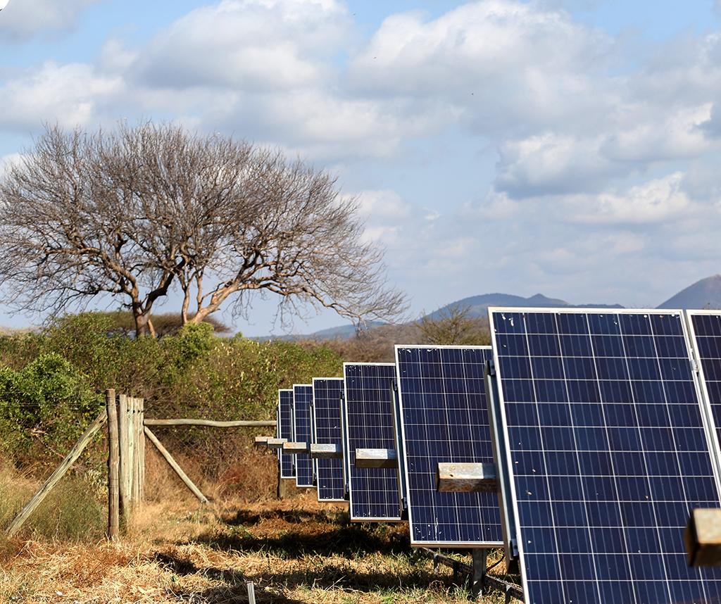 Solar panels generate electricity in a field in Kenya.