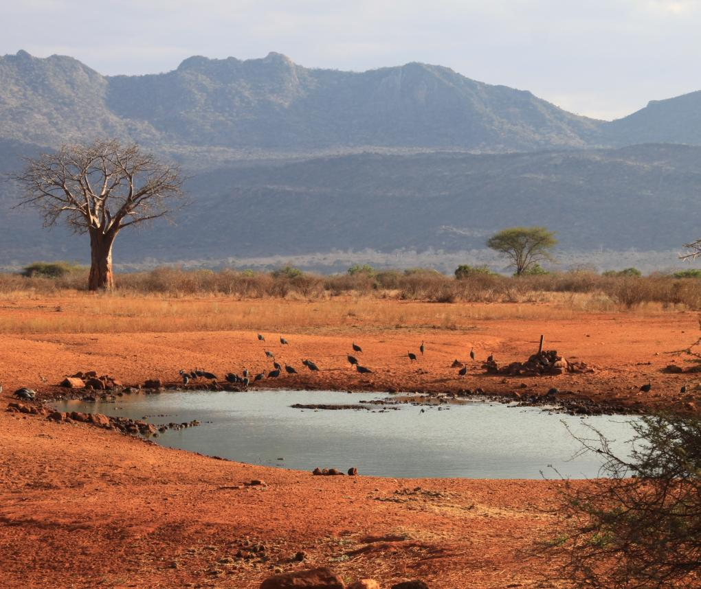 Kenya's Water Security