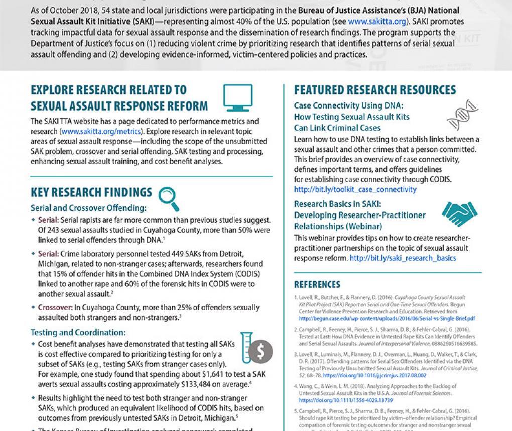SAKI Research Flyer