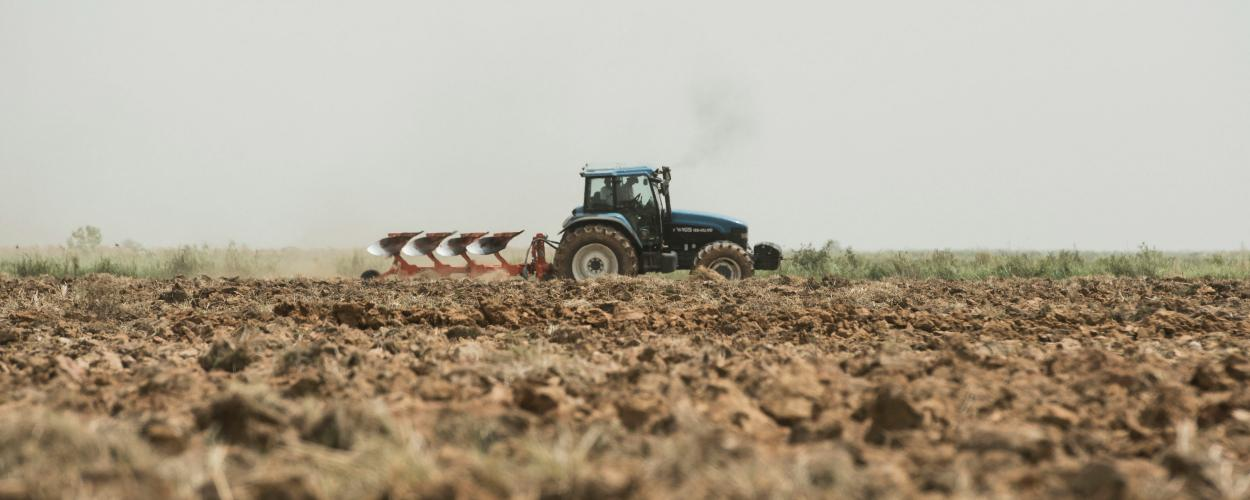 Long-distance view of two farmers riding a tractor through a grain field.