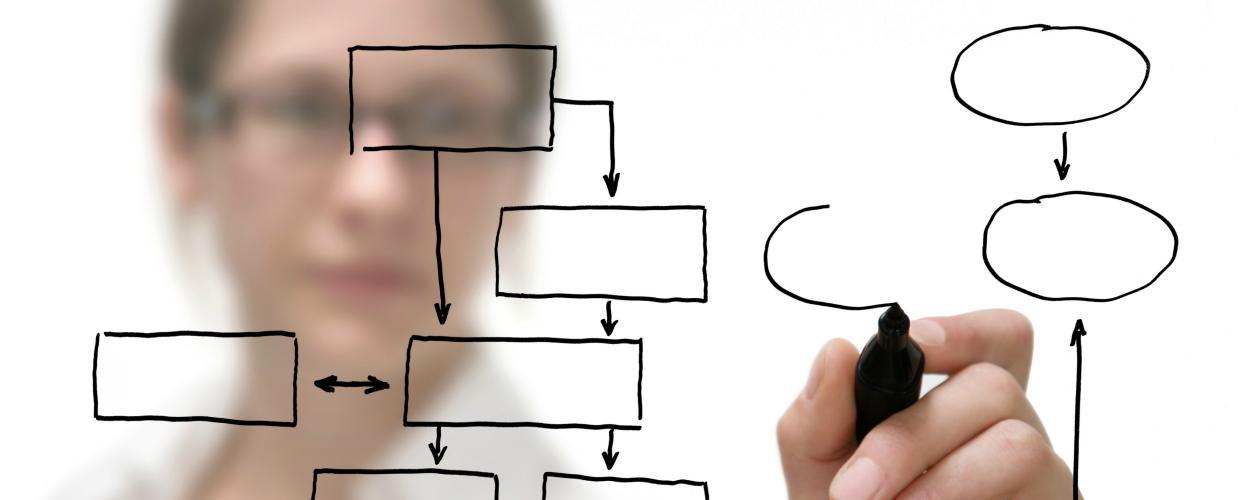 A researcher draws a flowchart