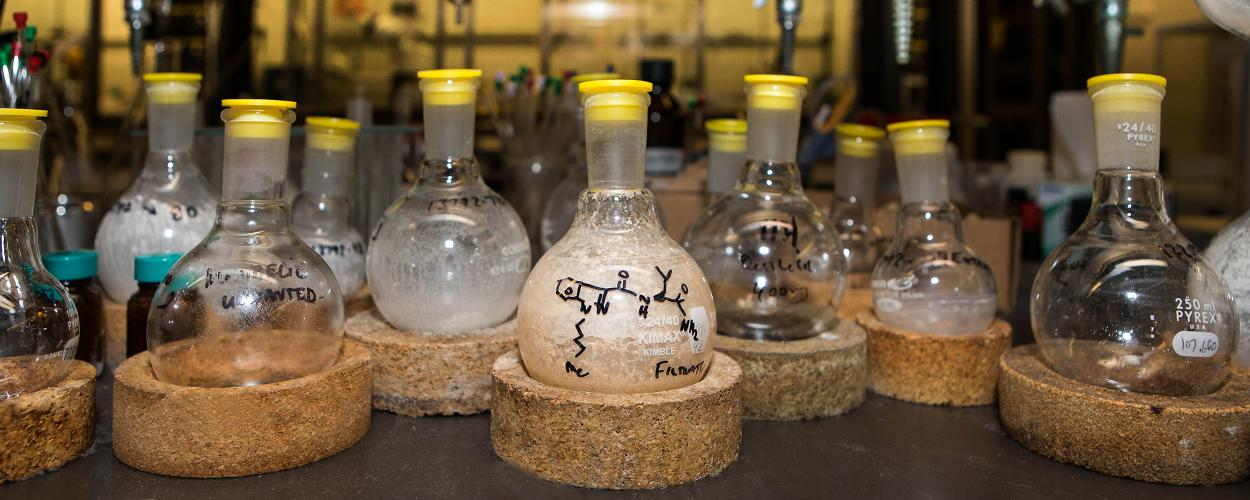 flasks of compounds in an RTI lab
