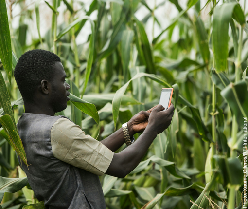Digital technology-and youth-are changing the future of agriculture. Photo Xaume Olleros/RTI International