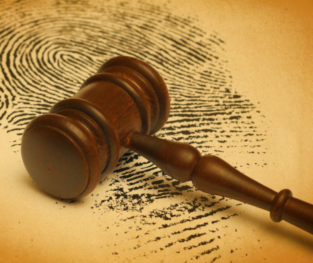 gavel and fingerprint