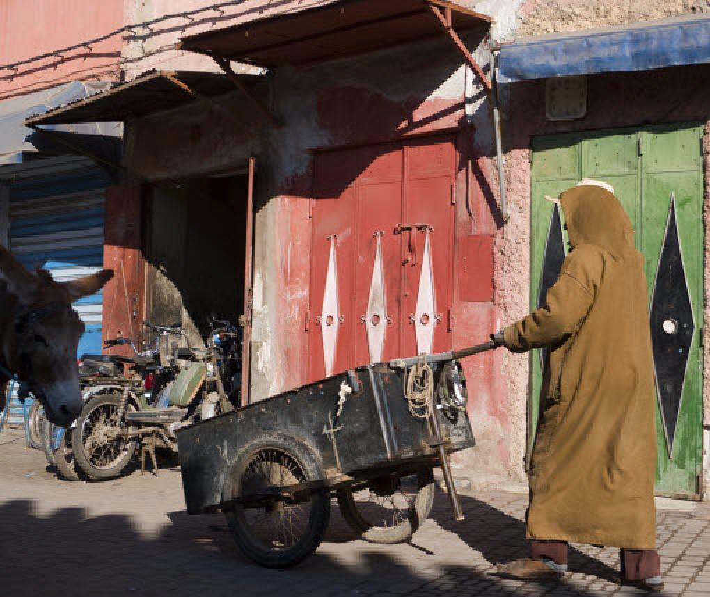 city dweller in Morocco pushes a hand cart