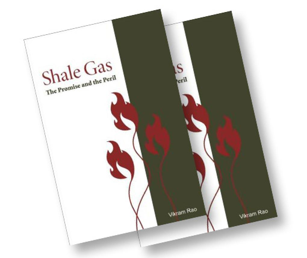 Cover of Shale Gas: The Promise and the Peril